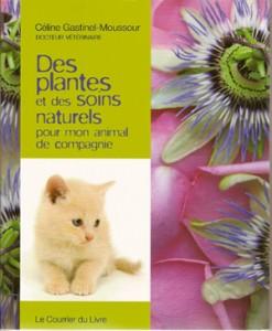 Des-plantes-et-des-soins-naturels-pour-mon-animal-de-compagnie