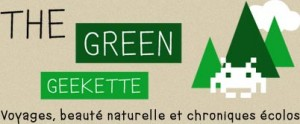 logo-greengeekette