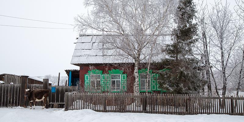 Natura Siberica farm december-130_1