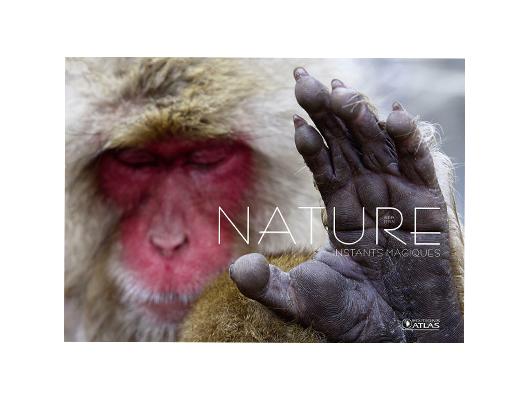 Nature Instants magiques